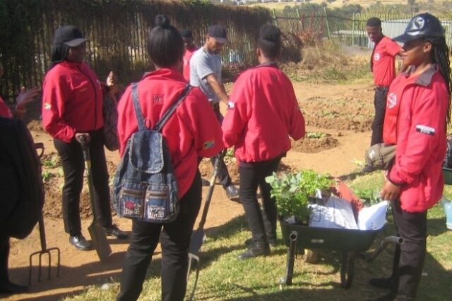 Group of service leaders in red jackets planting a garden